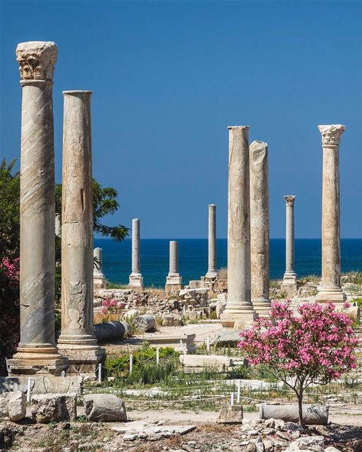 Os romanos colonizaram a cidade fenícia de Tiro em 64 A.C. e muitos... (Roman ruins in Tyre)