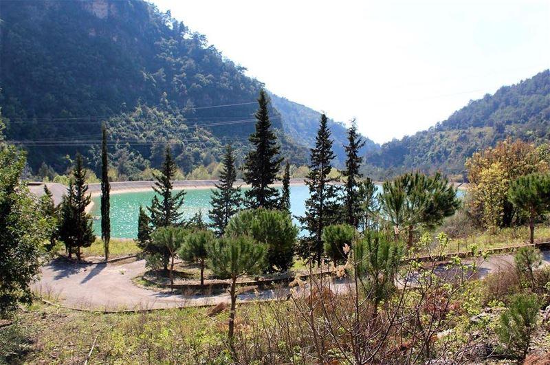 amazingplace heaven lebanon lebanesenature instadaily ... (Anâne, Al Janub, Lebanon)