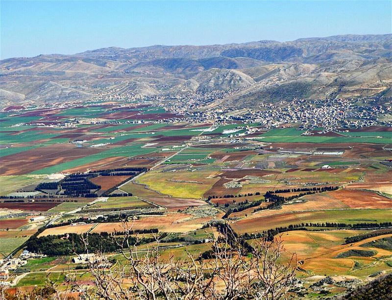 Simply beautiful❤❤❤ beautifulview farmland landscape ... (West Bekaa)