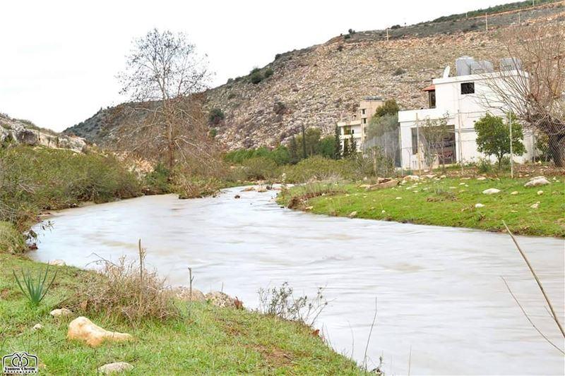 أسعد الله صباحكم بكل خير ☺ river nature naturelebanon lebanonature ...