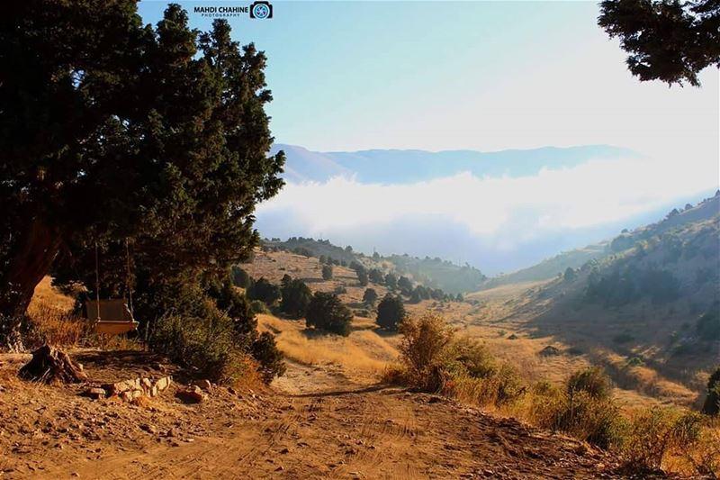 Beautiful view fron Jord_elhermelPhoto credits to @mahdichahine---------
