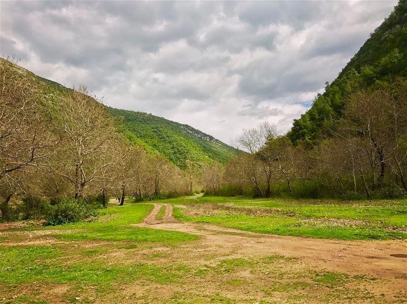 Weekend almost here 😎!......... naturegram natureshots ... (3youn el Samak)