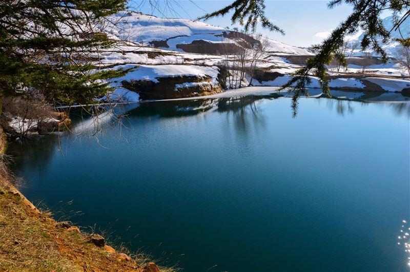 The earth has its music 🎶🌲..... nature naturephotography nikon... (El Laqloûq, Mont-Liban, Lebanon)