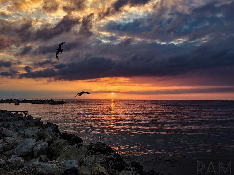 Je lui dirai les mots bleus.. les mots qu'on dit avec les yeux.. Parler me... (Corniche El Mina Tripoli)