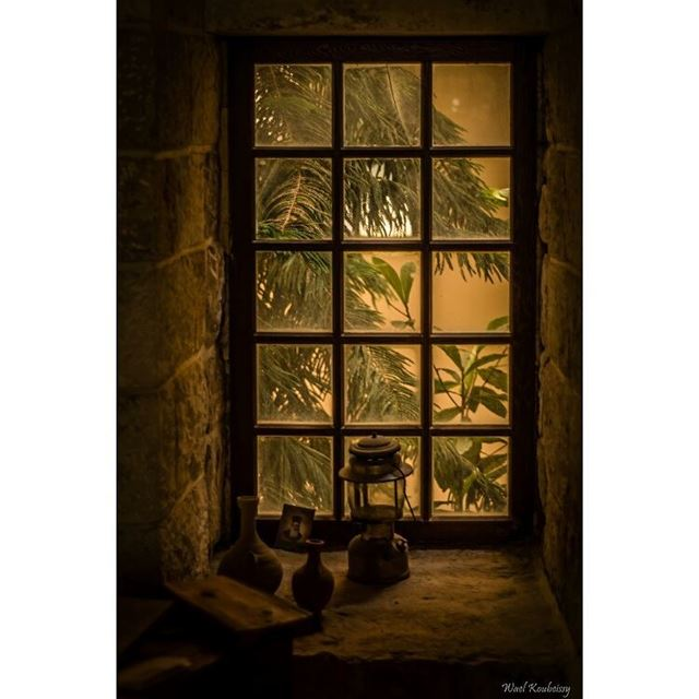 old  room  window  monastery  windows  tree  photo  light  sun ... (دير المخلص العامر)