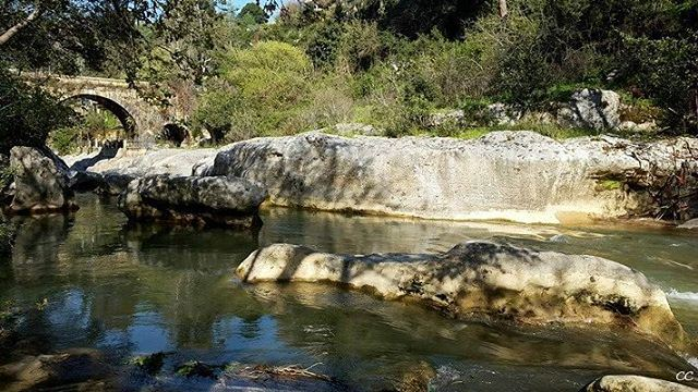 lebanon nature chouf jisrelqadi livelovelebanon whatsuplebanon ...