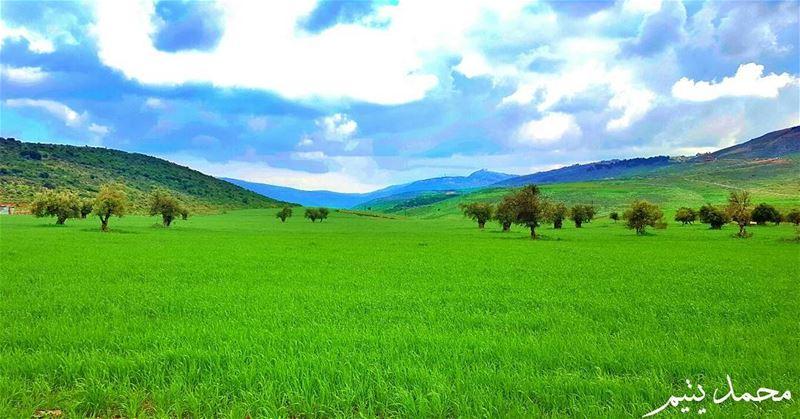 مسا الجمال ..و أزهر الربيع جماله في أرض الجنوب .. كفرمان 🌸🌼 spring ...