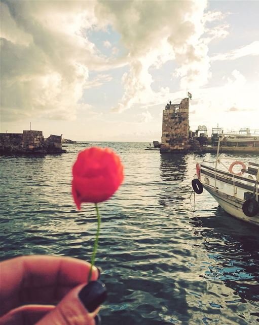 Coquelicot 🌸 ⚪⚪⚪⚪⚪⚪⚪⚪ jbeil byblos port sea mediterranean castle ... (Jbeil-Byblos)