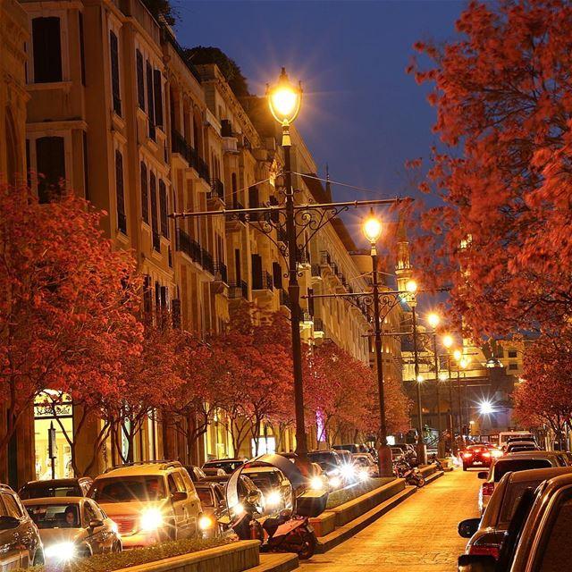 Good evening b e i r u t 🌆 streetstyle lights lighting city love piece... (Downtown Beirut)