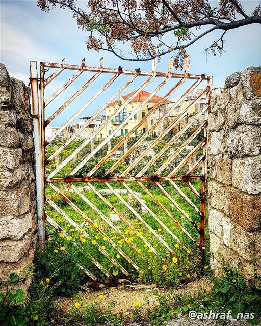 طلّ وسألني إذا نيسان دقّ البابخبّيت وجّي وطار البيت فيّي وغاب...... (Tyre, Lebanon)