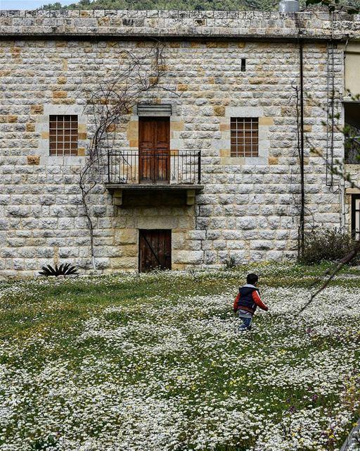 Fun in the spring ... lebanon aramoun kesserwan ig_lebanon ... (Aramoun, Mont-Liban, Lebanon)