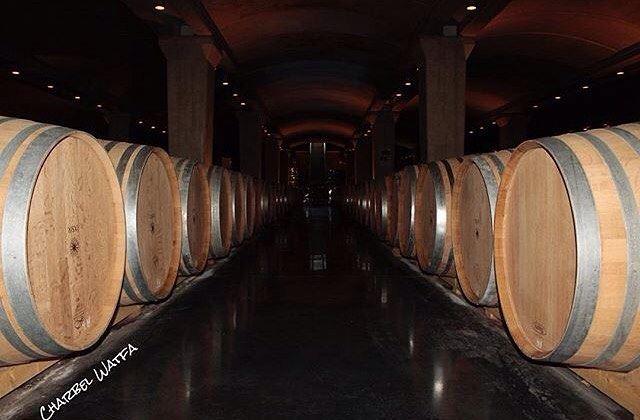 Amazing view of ixir winery batroun Photo by @charbel.watfa Share the... (Ixir Winery)