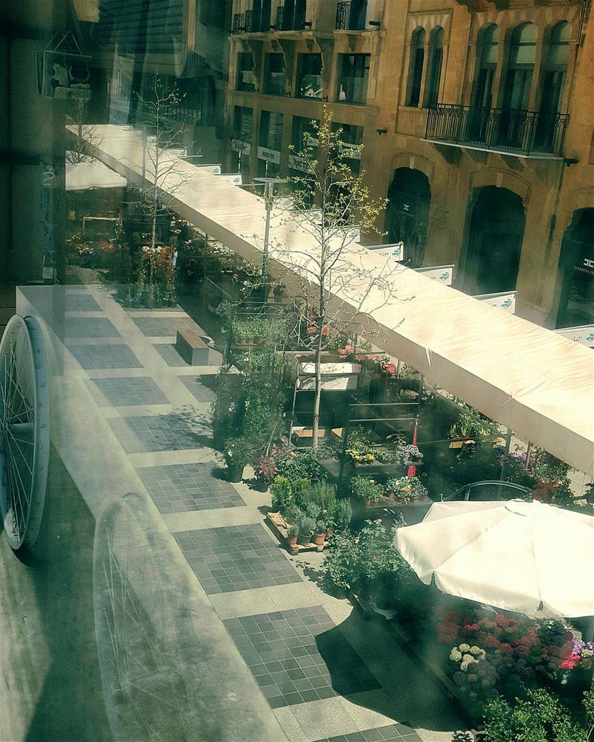 Spring on wheels...🌹🍃🏵🍃🌸🍃🌼🍃🌻🍃At the heart of Beirut ..@beiruts (Beirut Souks)