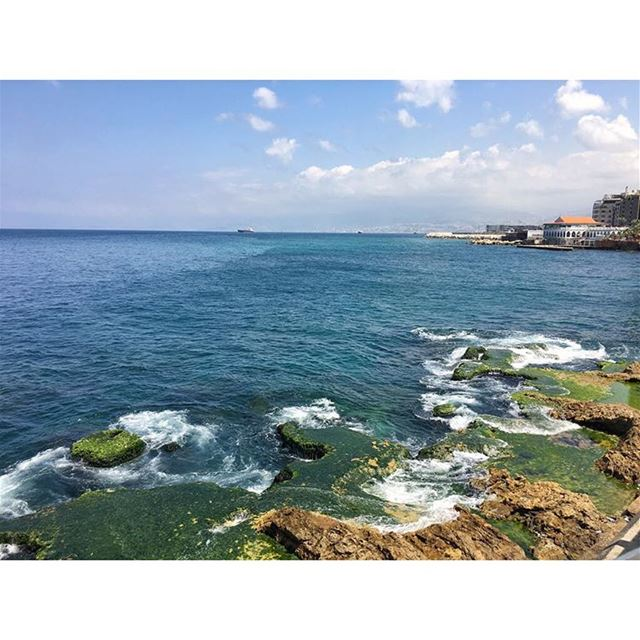 🌊 (Zaytouna Bay - Down Town)