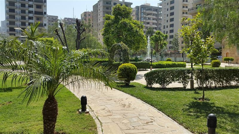 green trees park road buildings tripoli spring vibes beautiful ... (Dam wfarz)