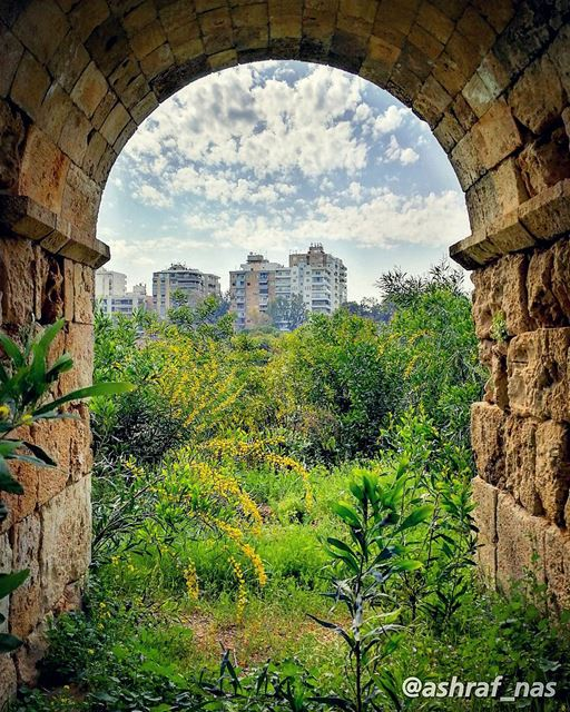 مدينة صور بين الماضي والحاضر livelovetyre ig_lebanon livelovebeirut ... (Roman ruins in Tyre)
