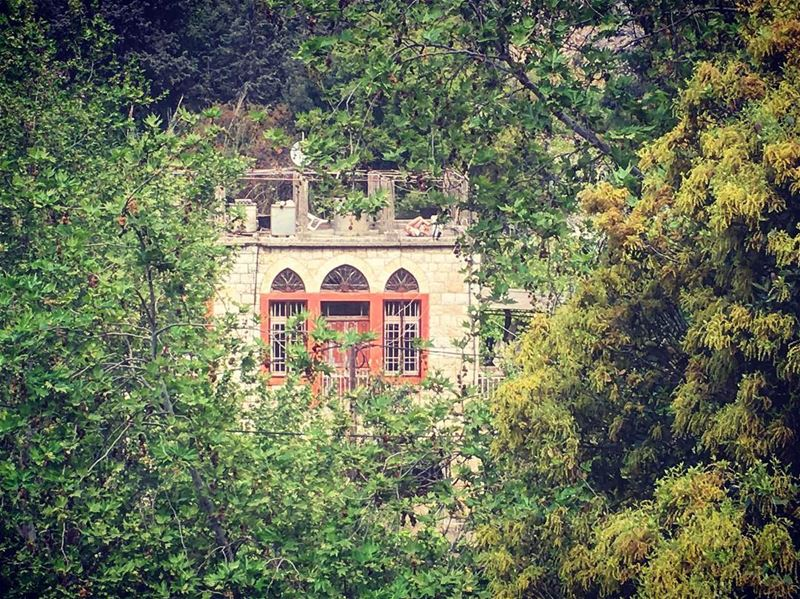🌿🌿Nested on the riverside 🌿🌿 insta_lebanon ig_lebanon lebanon_hdr ... (Nahr al-Kalb)