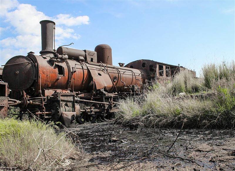 متل السهم الراجع ..من سفر الزمان صاروا العمر الماضي .. صاروا دهب النسيان... (Train Station Tripoli El Mina)