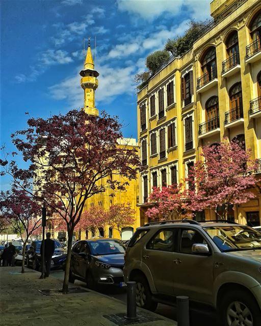 🌸 lebanon beirut photooftheday instagallery follow followme meetlebanon... (Downtown Beirut)