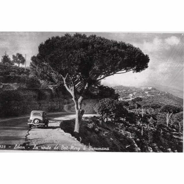 The Old Road - Beit Mery & Broumana 1939 .