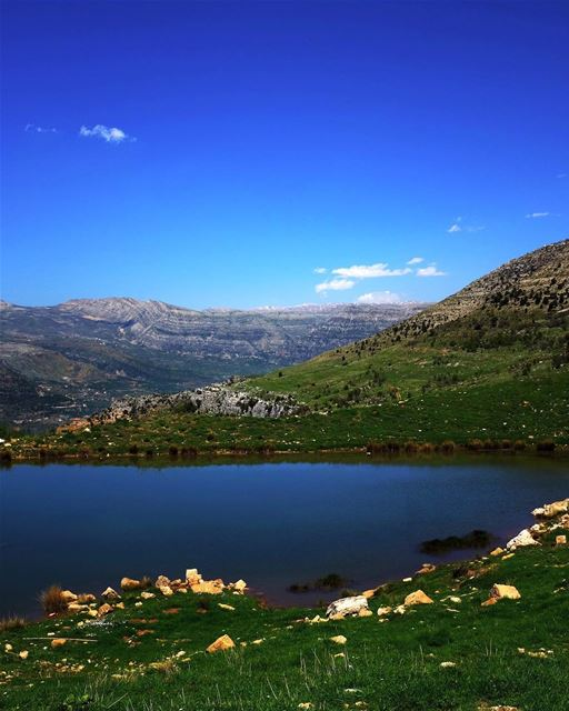 This Green and Pleasant Land. And so we wake this morning to read that... (Hrâjel, Mont-Liban, Lebanon)