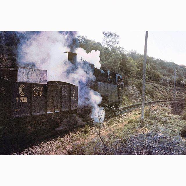 The Lebanese Train ,