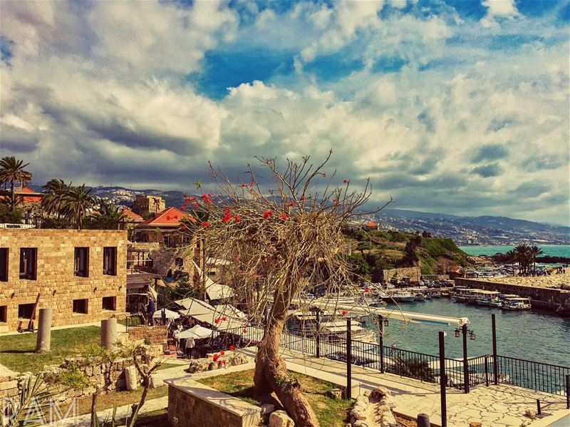 We accept the Love we think we deserve.______________________________... (Byblos, Lebanon)
