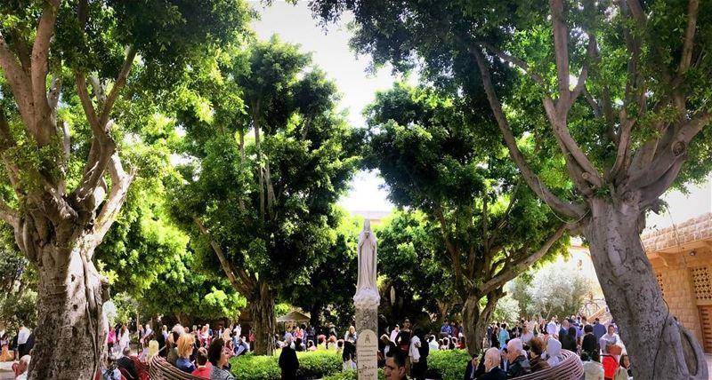 شعنينة مباركة للجميع... palmsunday beirut lebanon virgin mary ... (Eglise Medaille Miraculeuse - Achrafieh -)