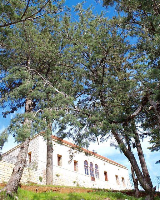 rashya castle historicalplace lebanonhistory mountaintop ... (Rachaya Castel)