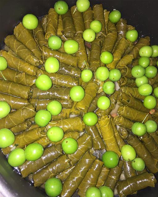 yummy thebest foodporn lebanon wara23enab vegetables favorite ...