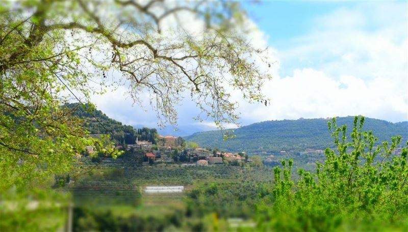 ظن ان السعادة في عينيها الخضراوين ولكن ساذجتهما جذبت قلباً امرضته العقد...... (El-Mukhtarah, Mont-Liban, Lebanon)