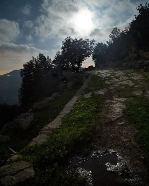 """There are nights when the wolves are silent and only the moon howls""~... (Chouf)"
