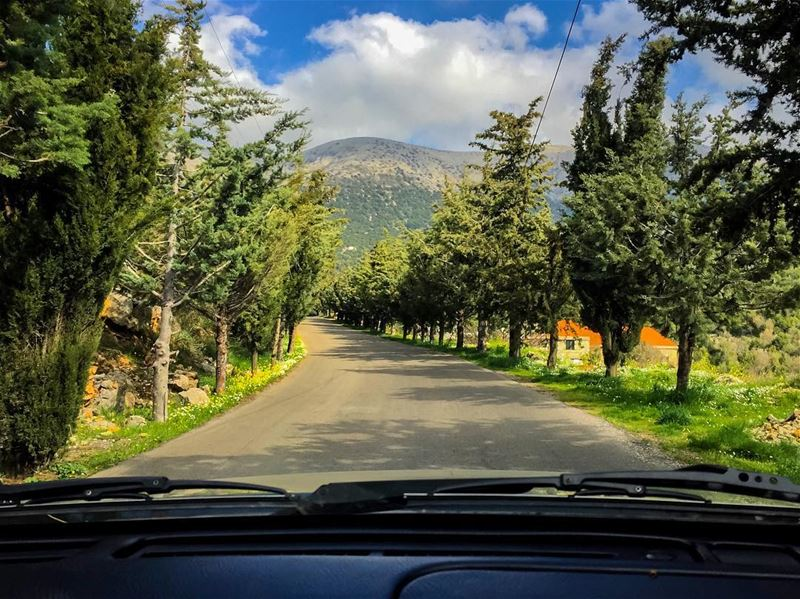 How road trips photos should look like 🌲🚙🌲----------------------------- (Botmeh El Shouf)