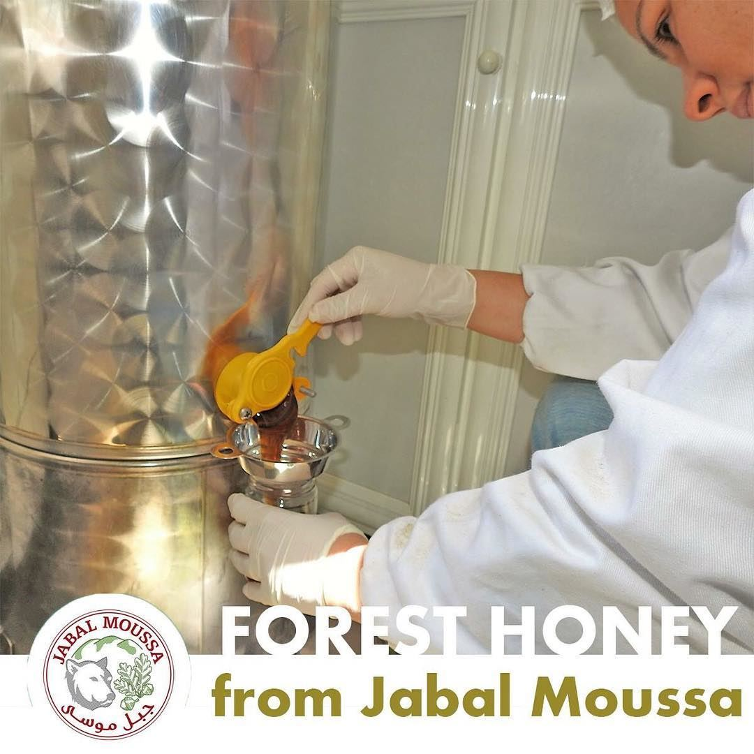 You can now order our famous JabalMoussa Forest Honey online! Every... (Jabal Moussa)