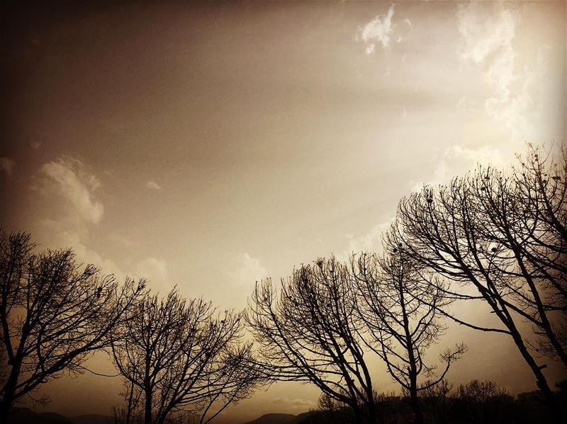 lebanon landscape_captures lebanon_hdr lebanonphotography ...