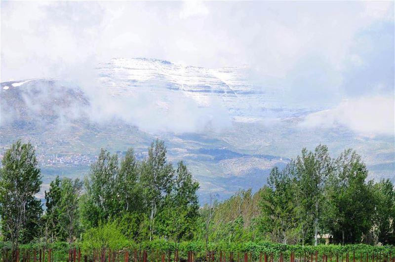 Breathtaking lebanonphotography lebanon_hdr lebanon insta_lb ... (Bekaa Valley)