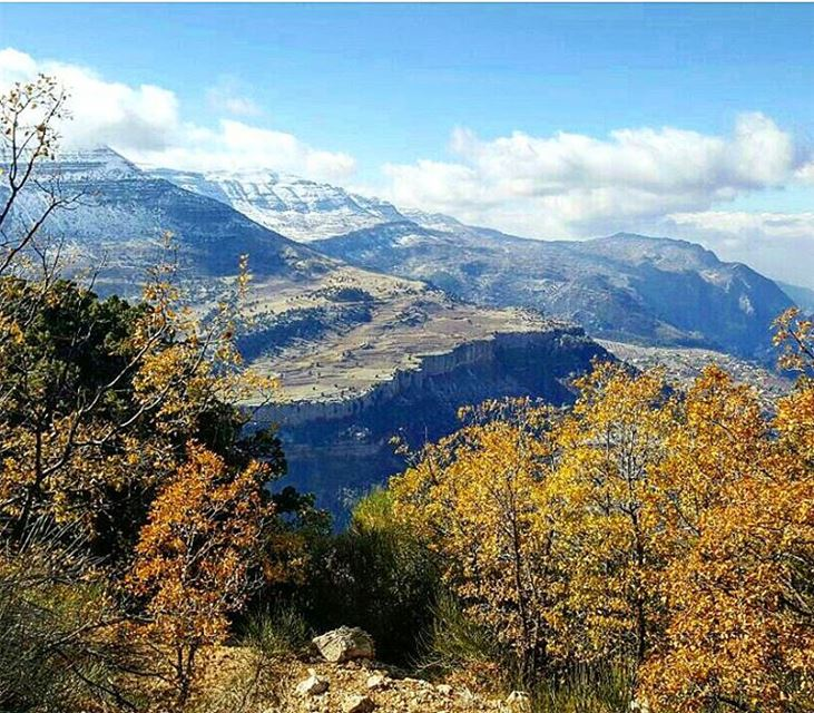 The physician treats but nature heals naturebeauty naturelover landscape... (Mount Lebanon)