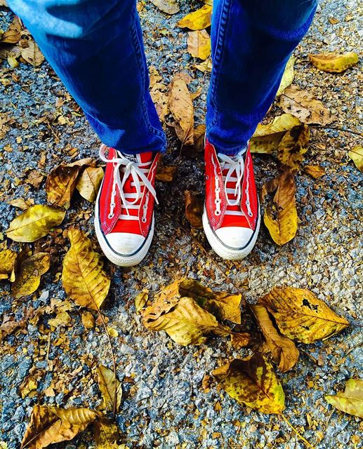 👟🍂🍁 sergesarkisphotography photography canon canonphotography ...
