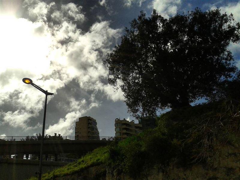 ⛅💡🌳 lebanon beirut photooftheday instagallery instamoments nature... (Beirut, Lebanon)