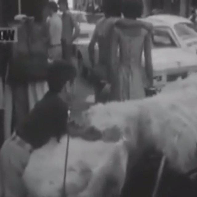 Hamra Street in 1963 .
