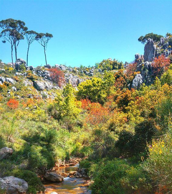 Beautiful nature 😍 lebanon nature naturelovers natureporn landscape ... (Bmariam, Mont-Liban, Lebanon)