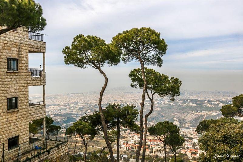 Ras El Jabal - Mountain to sea. Lebanon ... trees mountains ...