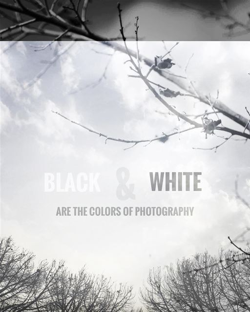 Black & White are the colors of photography ,,, blacknwhite_perfection ...