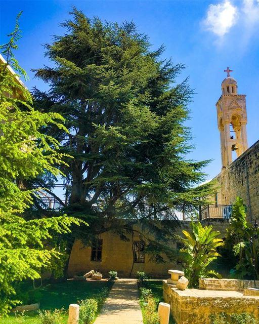""""""" المسيح قام...حقاً قام...ونحن شهود على ذلك..."""" whatsuplebanon... (Kfifan, Liban-Nord, Lebanon)"""