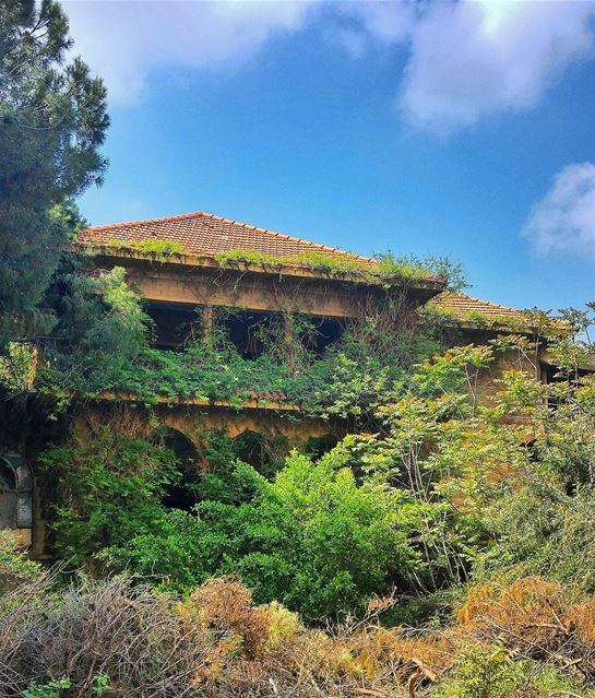 A Deserted House 😍 lebanon nature naturelovers natureporn landscape ... (Horch Tabet)