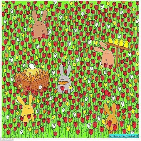 """لأصحاب العيون الثاقبة.. أين """"البيضة المخفية"""" في الصورة؟باتت الخدع البصرية"""
