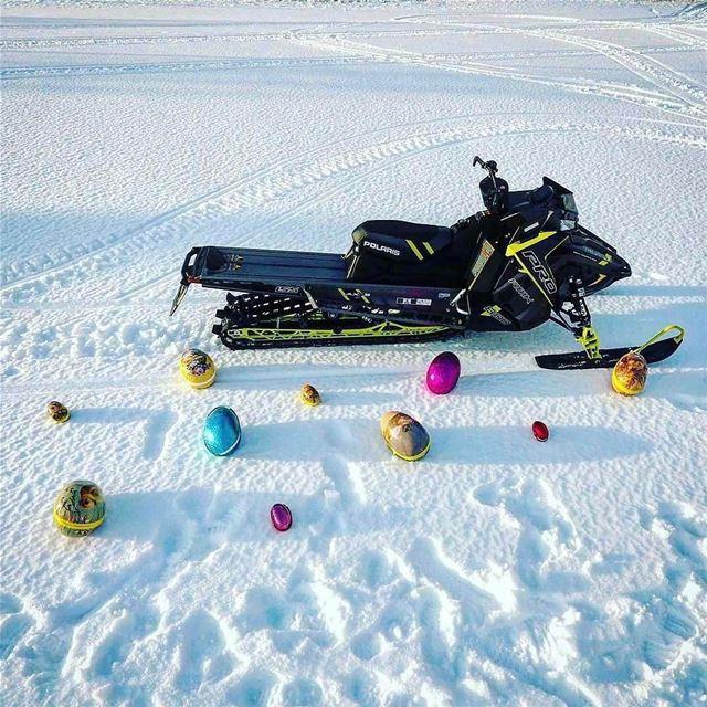 Eggcellent 🥚@polarissnow polarislebanon cruiserblack rzrturbo turbo...