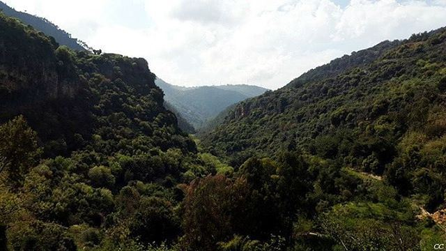 lebanon mountains green nature chouf livelovelebanon ...