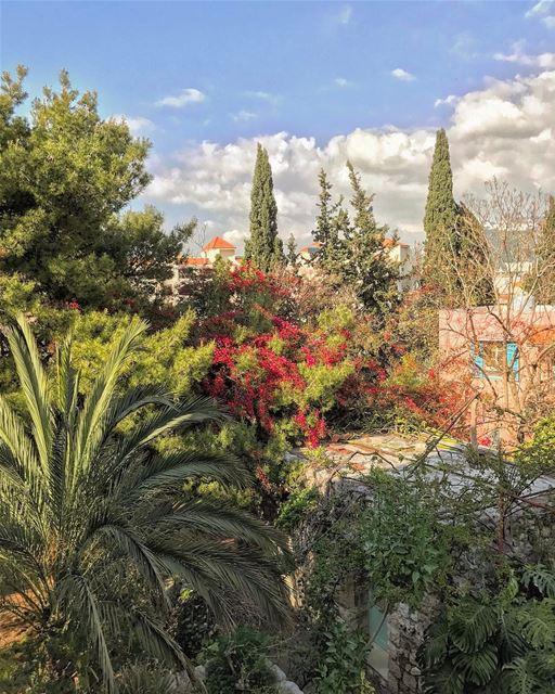 Le jardin... (Zouk Mosbeh)