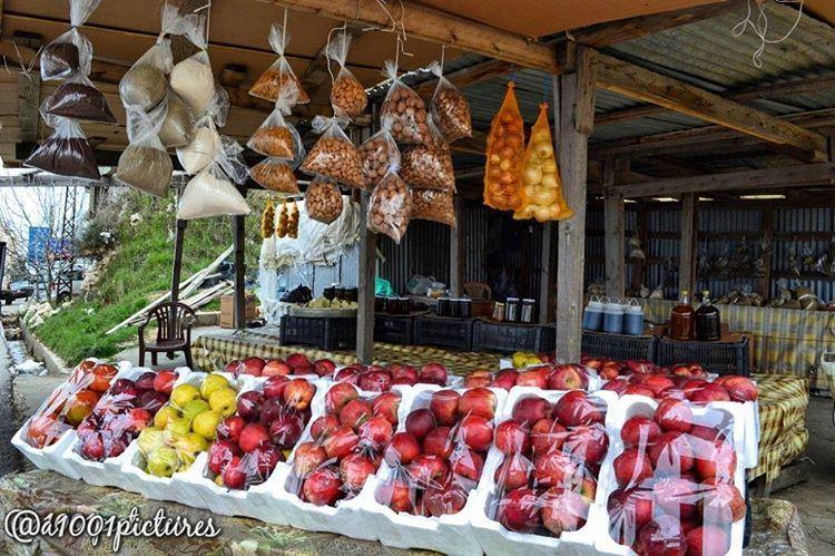 fruit travel lebanon beirut localproduct nobdaddays worldbestgram ... (Somewhereinlebanon)